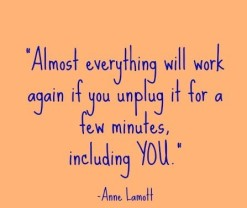 Almost-everything-will-work-again-if-you-unplug-it-for-a-few-minutes-including-you.-Anne-Lamott (2)